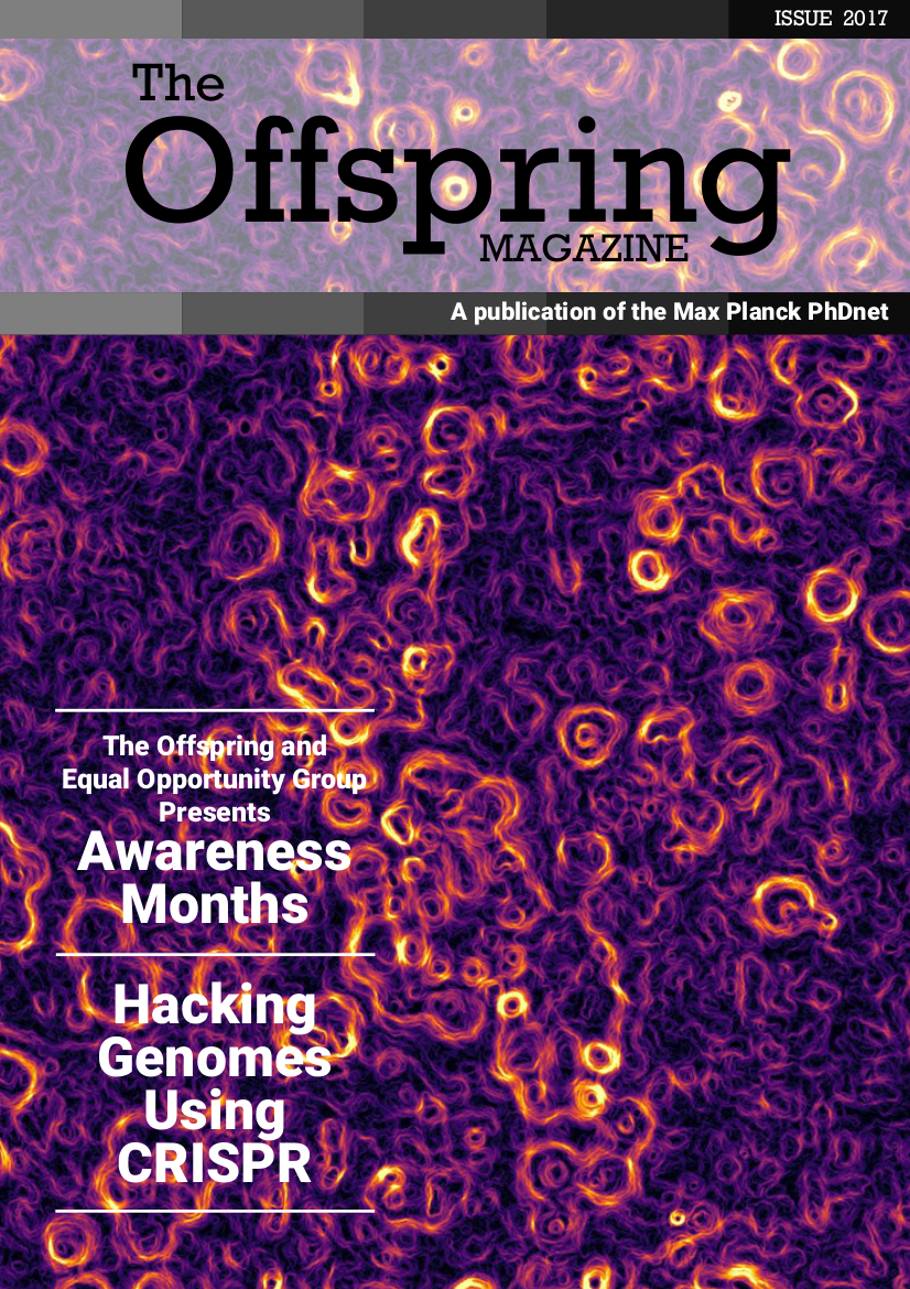 Cover of the 2017 issue of the Offspring